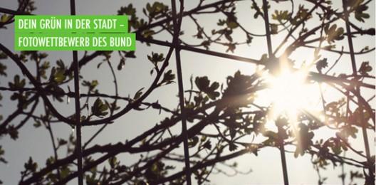 Header 09-528x260 in Dein Grün in der Stadt – Fotowettbewerb des BUND