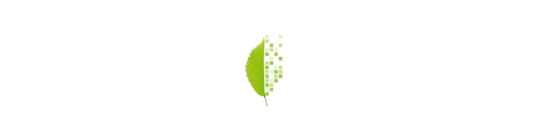 Bits Baeume Logo in Bits & Bäume: Die Konferenz für Digitalisierung und Nachhaltigkeit