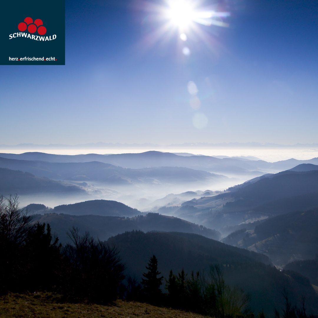 Belchenblick ErichSpiegelhalter Schwarzwald-1080x1080 in Freiburg und der Schwarzwald bei Instagram